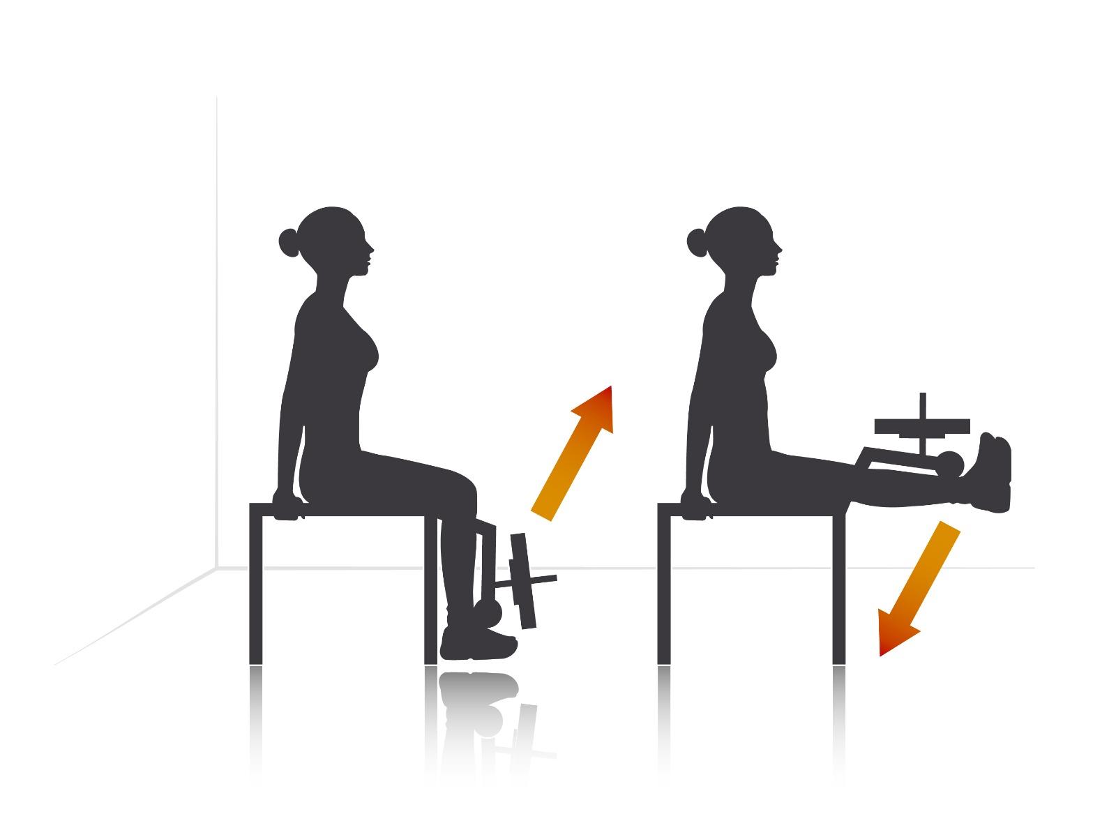 Tipuri de exercitii acasa